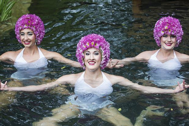 Chelsea Flower Show Synchronised Swimmers M&G Garden